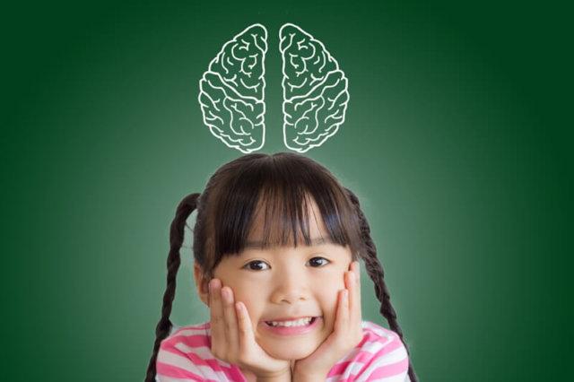 子供の脳の成長